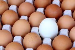 Nahaufnahmeansicht des Hühnerbraunen Eies Stockfotografie