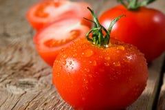 Nahaufnahmeansicht von Tomaten mit Wassertropfen Stockfotografie