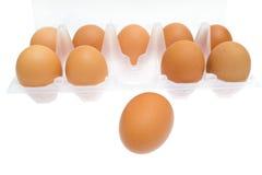 Nahaufnahmeansichthintergrund des braunen Eies des Huhns. Stockbild