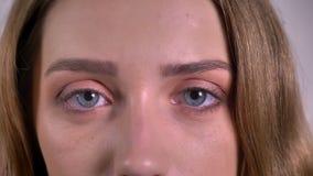 Nahaufnahmeaugeporträt der blonden kaukasischen jungen Frau, die direkt in Kamera auf grauem Hintergrund aufpasst stock footage