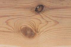 Nahaufnahmebeschaffenheit eines Baums Lizenzfreie Stockbilder