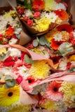 Nahaufnahmebeschaffenheit, Hintergrund von Blumen Blumenstrauß von Blumen - Gerbera, Gartennelke, Rosen stockbild