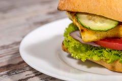 Nahaufnahmebild des vegetarischen Sandwiches mit Tofu Lizenzfreie Stockfotografie