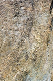 Nahaufnahmeentlastung der Felsen Stockfoto