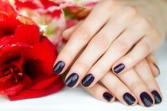Nahaufnahmefingernägel mit dunkler Maniküre und roten Blumen Lizenzfreie Stockfotografie