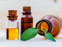 Nahaufnahmeflaschen weises ätherisches Öl für Aromatherapie mit Salbei stockfotografie