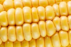 Nahaufnahmefoto der gelben Maishintergrund-, gesunder und geschmackvollernahrung lizenzfreies stockfoto