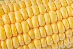 Nahaufnahmefoto der gelben Maishintergrund-, gesunder und geschmackvollernahrung lizenzfreie stockbilder