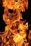Nahaufnahmefoto des Feuers Stockfotos
