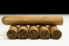 Nahaufnahmefoto des Stilllebens mit sechs Zigarren auf Tabelle mit blurr lizenzfreie stockfotos