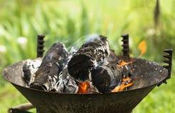 Nahaufnahmefoto natürlichen bbq-Feuers stockfotografie