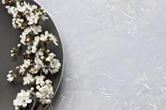 Nahaufnahmefoto von blühenden Blumen des schönen Weiß des Kirschbaums Lizenzfreie Stockfotos