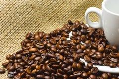 Nahaufnahmefoto von Körnern des gebratenen schwarzen Kaffees mit weißem porc stockbilder
