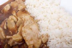 Kung Pao Huhn mit Reis lizenzfreies stockbild