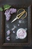 Nahaufnahmefoto von schönen frischen lila Blumen in den Zucker- und Weinlesescheren im Rahmen auf schwarzem Tabellenhintergrund Lizenzfreie Stockfotos