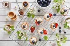 Nahaufnahmefoto von selbst gemachten Kuchen mit mascarpone Käse, Zimt, Erdbeeren, Blaubeeren und schönem wildem Apfelbaum floweri Lizenzfreie Stockbilder