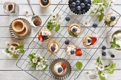 Nahaufnahmefoto von selbst gemachten Kuchen mit mascarpone Käse, Zimt, Erdbeeren, Blaubeeren und schönem wildem Apfelbaum floweri Lizenzfreies Stockbild