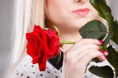 Nahaufnahmefrau, die Rotrose nahe Gesicht hält Stockbild
