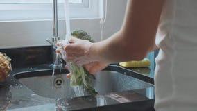 Nahaufnahmefrau ` s übergibt waschenden Brokkoli an der inländischen Küche stock footage