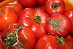 Nahaufnahmegruppe Tomatenhintergrund lizenzfreies stockbild