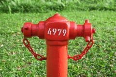 Nahaufnahmehydrant mit grünem Hintergrund Stockfoto
