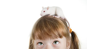 Nahaufnahmemädchen mit einer Ratte Lizenzfreie Stockbilder