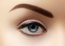 Nahaufnahmemakro des schönen weiblichen Auges mit perfekten Formaugenbrauen Säubern Sie Haut, Mode naturel Make-up Gute Vision stockfotografie