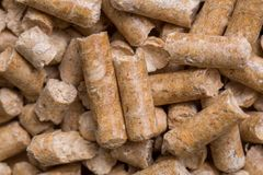 Nahaufnahmemakrofüller für Katzenhaustier-Haustiertoilette Gepresstes hölzernes sauberes Sägemehl egology, kein Geruch für das Ha lizenzfreie stockfotos