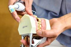Nahaufnahmen auf Zahnarzt ` s Praktikum lizenzfreie stockbilder