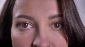 Nahaufnahmeporträt der jungen kaukasischen brunette Frau, die direkt in Kamera aufpasst stock video footage