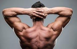 Nahaufnahmeporträt von einem muskulösen bemannt zurück stockbilder