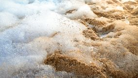 Nahaufnahmezusammenfassungsbild von vielen Seife oam auf sandigem Seestrand nach Sturm stockfotos