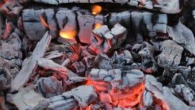 Nahe Ansicht an einer glühenden Holzkohle und Flamme im Grill grillen stock video footage