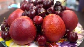 Nahe Ansicht von verschiedenen frischen Früchten, von Nektarinen und von Kirschen Stockfotografie