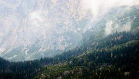 Nahe hohe Ansicht der Klippen und des Waldes im hohen Tatras stockbilder