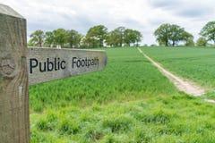 Nahe hohe Ansicht eines allgemeinen Fu?wegenzeichens in Surrey, Gro?britannien lizenzfreie stockfotos