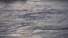 Nahe hohe Ansicht von einem Fluss mit Flut in welchen hölzernen Flößen stock footage