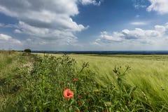 Nahe Normanby Lincolnshire, Großbritannien im Juli 2017 Ansicht von Lincolnshire-Wolds von Viking Way lizenzfreies stockfoto