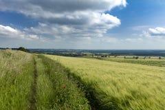 Nahe Normanby Lincolnshire, Großbritannien im Juli 2017 Ansicht von Lincolnshire-Wolds von Viking Way lizenzfreie stockfotografie