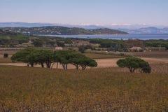 Nahe St Tropez Stockbild