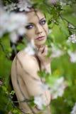 Naher blühender Apfelbaum des jungen reizvollen Mädchens Stockfotografie