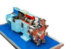 Naher hoher Querschnitt Spitzentechnologie und Qualität Dreh oder VorsprungsgangVakuumpumpe mit dem Getriebe für industrielles an lizenzfreie stockfotos