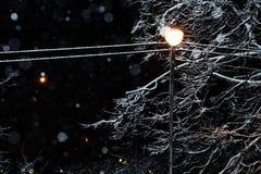 Naher Schnee der Straßenlaterne Stockbilder