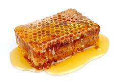 Nahes hohes der Bienenwabe stockbild
