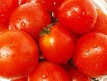 Nahes hohes der Tomate Stockbild