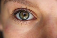 Nahes hohes des Auges Stockfotos
