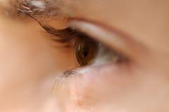 Nahes hohes des Auges Stockfoto