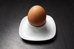 Nahes hohes des Eies Lizenzfreie Stockfotos