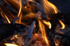 Nahes hohes des Feuers Stockfoto