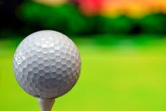 Nahes hohes Foto eines Golfballs im Golfplatz in einem warmen Sonnenunterganglicht stockbild